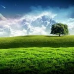 प्रकृति की विशेषता बताते 38 अनमोलविचारNature Quotes in Hindi