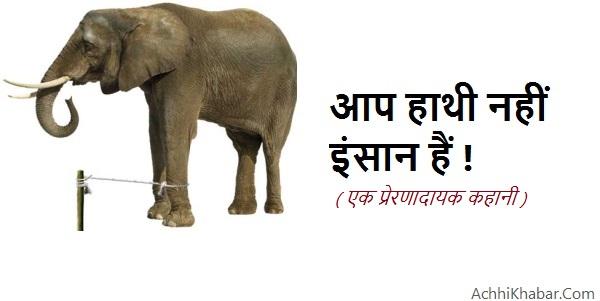 आप-हाथी-नहीं-इंसान-हैं--