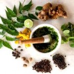 Ayurveda Article in Hindi