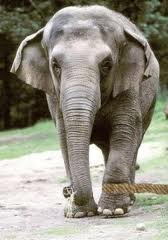 Motivational Hindi Story