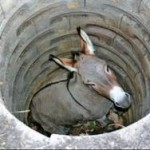 Motivational Story of Donkey in Hindi