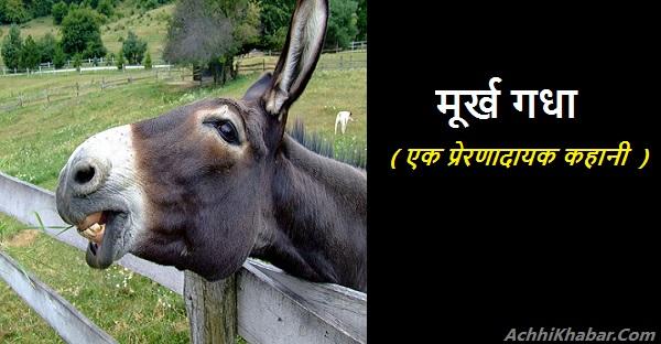 Stupid donkey