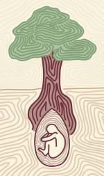 Hindi Essay on Importance of Trees