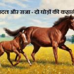 Hindi Story on Overcoming Obstacles -1
