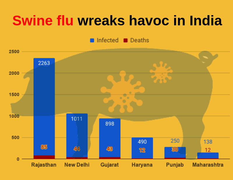 Swine Flu Symptoms in Hindi 2019