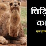 Hindi Story on Realizing Your Potential