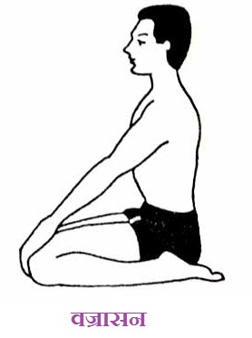 Vajrasana in Hindi