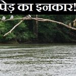 Hindi Story on Positive Thinking