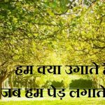 Hindi Poem on Trees