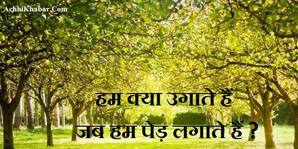 Hindi Poem on Trees